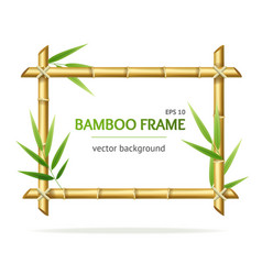 Realistic 3d detailed bamboo shoots frame vector