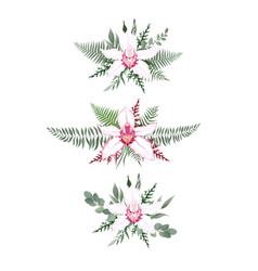 set floral branch flower pink orchid green vector image
