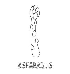 Asparagus icon outline style vector