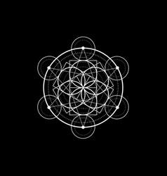 seed life symbol sacred geometry mystic mandala vector image