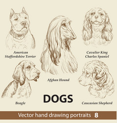 set hand drawing dogs 8 vector image
