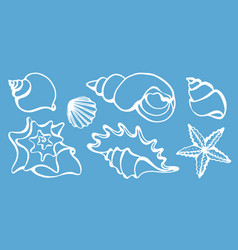 Set seashells vector