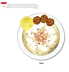 Soto or Indonesian Chicken Soup with Meat vector image