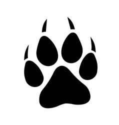 wolf print vector image