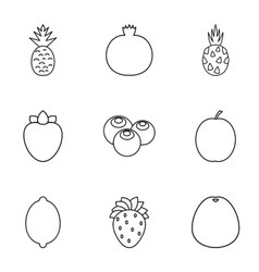 Fresh fruit icons set outline style vector