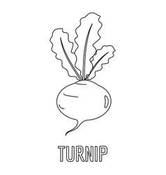 turnip icon outline style vector image vector image