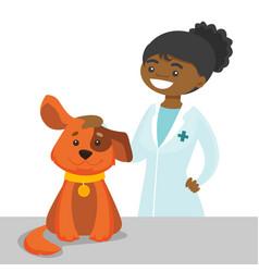 African-american veterinarian doctor examining dog vector