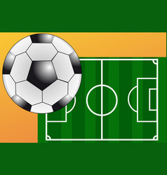green football field with white dividing lines vector image