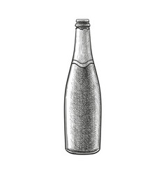 Ink sketch champagne bottle vector