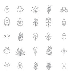 leaf icons set outline style vector image
