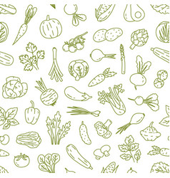 natural organic vegetables in monochrome color vector image