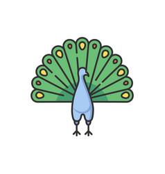 Peacock rgb color icon vector