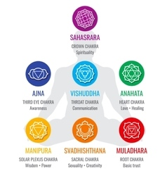 Spiritual indian chakra symbols sacred geometry vector