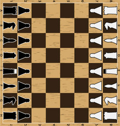 Chess board with figure vector image vector image