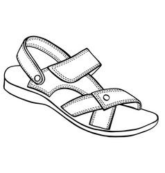 sandal sketch vector image