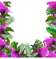 Tropical leaves Floral design background vector image