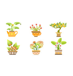 blooming potted plants set home or office vector image