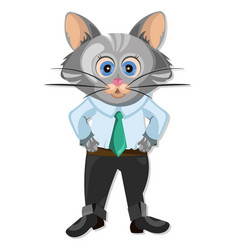 Cute cat cartoon character animation vector