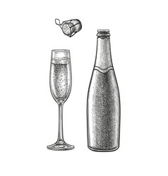 Ink sketch champagne vector