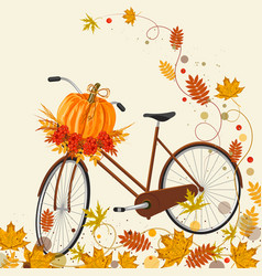 autumn background with bicycle pumpkin and leaves vector image