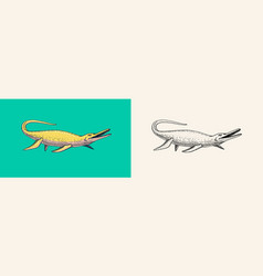 Dinosaurs elasmosaurus mosasaurus skeletons vector