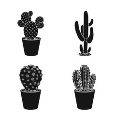 isolated object of cactus and pot icon collection vector image