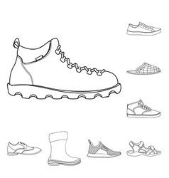 isolated object of shoe and footwear symbol vector image