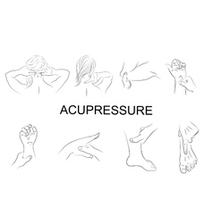point massage Body parts vector image