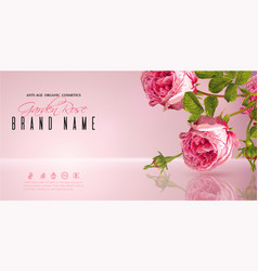 rose flower banner vector image