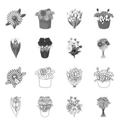 Spring and wreath icon set vector