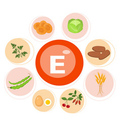 Vitamin e or tocopherol food sources natural vector