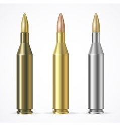 Rifle Bullet Set vector image