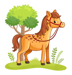 cartoon horse standing in a meadow vector image