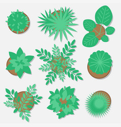 Collection of plants for web design flat style vector