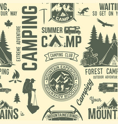 summer camp seamless pattern or background vector image