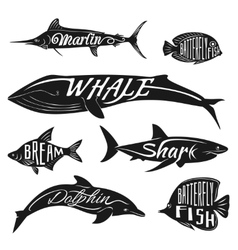 Retro vintage fish with names tattoo set vector image vector image