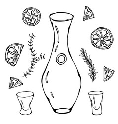 Decanter for wine oil or water sketch with citrus vector