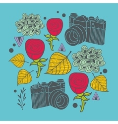 Beautiful print with vintage photo camera and vector