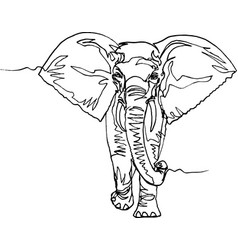 Elephant africa continuous line vector
