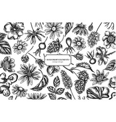 Floral design with black and white celandine vector