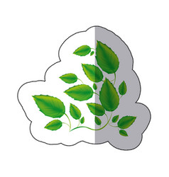 Green branches with leaves icon vector