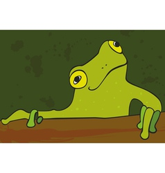 Gren Frog vector image