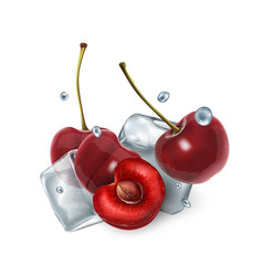 juicy cherry berries with ice cubes and water vector image