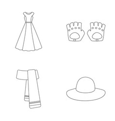 dress clothes fashion style and other clothes vector image vector image