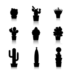 Cactus silhouettes on white background vector image vector image