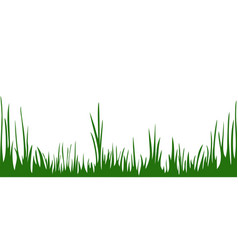 the green grass isolated on the white background vector image