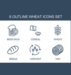 6 wheat icons vector