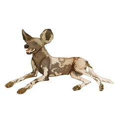 African wild dog vector image