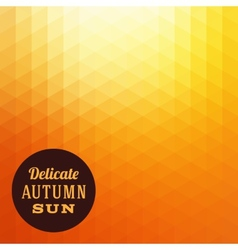 Autumn Sun Triangle Background vector
