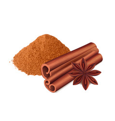 cinnamon food spice sticks and leaf cooking vector image